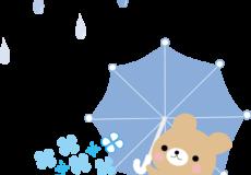 梅雨入り!!
